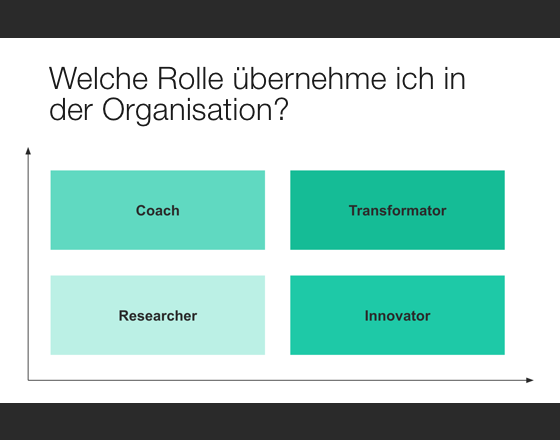 Rolle in der Organisation